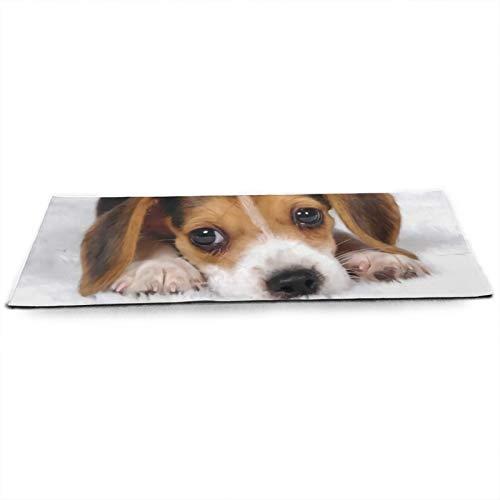 Beagle - Esterilla de yoga antideslizante para cachorros y perros, respetuosa con el medio ambiente, ideal para yoga, pilates y ejercicio en el suelo, 180 cm x 61 cm x 5 mm
