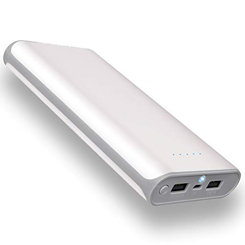 20000mAh Portable Power Bank 2 USB Ports Mobile Charger External Battery with Flashlight for iPhone 8X 8s 7 Plus 6s 6 Plus iPad Samsung Galaxy Smartphones Tablet and More (Gray Frame)