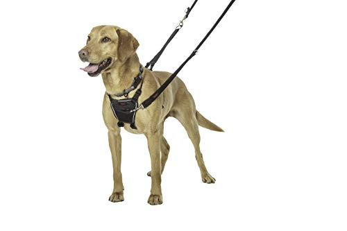 The Company of Animals Halti Dog Harness, No Pull Harness for Medium Dogs, Stop Dog Pulling on Walks with Halti Dog Harnesses, for Medium Dogs