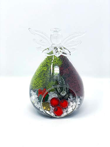 Creations by Nathalie - Holiday Glass Ornament Succulent Terrarium Kit (Angel)