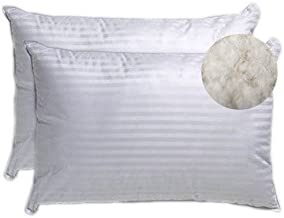 Trance Home Linen Classic Cotton Pillows- 17 x 27-inch (White)