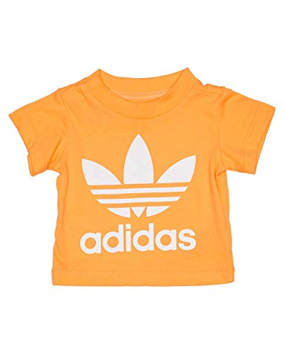 adidas Baby Trefoil T-Shirt, Real Gold/White, 80