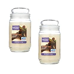 best top rated better homes and gardens candles 2021 in usa