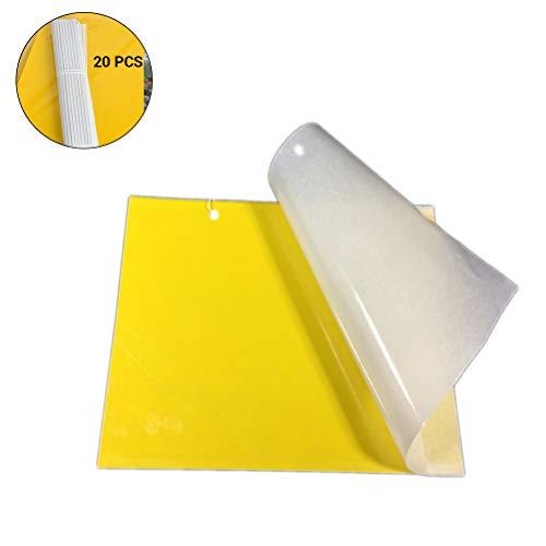 Fyeep Gelbsticker Trauermücken 20 Stück Gelbtafeln Gelb Sticker Fliegenfalle Gelbsticker Zimmerpflanzen Fruchtfliegen Fliegenfänger Sticker Doppelseitiger Klebstoff mit Niederlassung