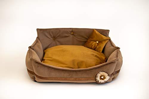 MOOI Hundebett Hundesofa Waschbar Hundekörbchen Exklusiv Katzenbett Haustierbett Hundekissen für kleine mittlere große Hunde I Dream I Gold