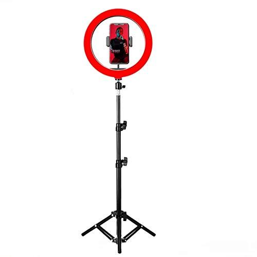 Queta Ringleuchte LED Ringlicht 10 Zoll mit stativ 4 Beleuchtungsmodi und 15 Helligkeitsstufen Selfie Multi-Kamera dimmbar Videoaufnahme Live Stream Stativ & Handyhalter Fotografie schminken 170cm