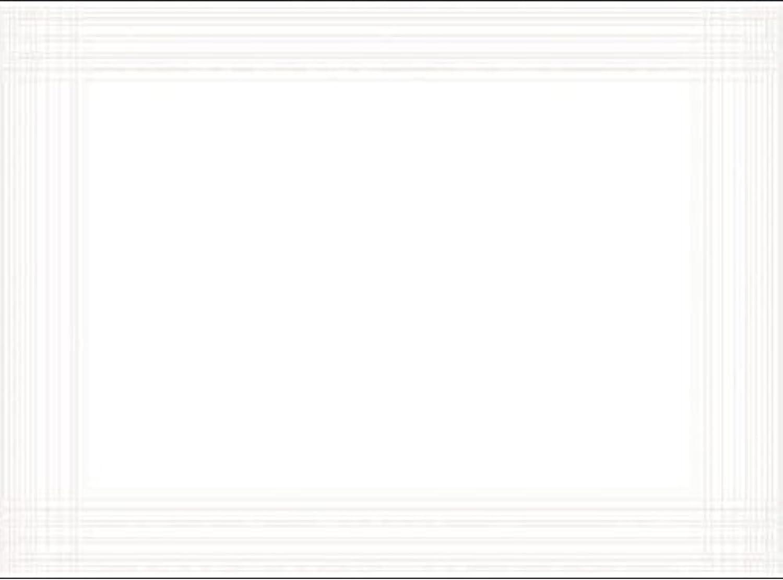 Duni Tischset aus Dunicel Uni Uni Uni weiß unbedruckt, 30 x 40 cm, 500 Stück B00D6HKFHC 901488