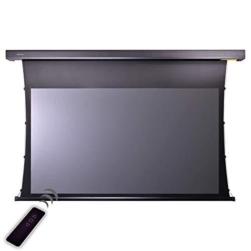 HiViLux Tension Motor Leinwand Dualspann Laser TV/UST-Beamer:HiViPrism Cinema HDR Hochkontrast/8K/4K/3D (16:9 Bild:221x124cm 100' Diagonal, Schwarz)
