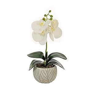 Home Decor 4 U – Orquídea artificial en maceta, (32 cm), Phalaeonopsis, planta artificial, orquídea, flor artificial…