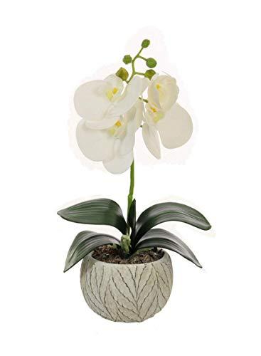 Home Decor 4 U – Orquídea artificial en maceta, (32 cm), Phalaeonopsis, planta artificial, flor artificial, centro de…