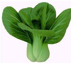 40 graines / Sac quatre saisons graines de légumes petit balcon