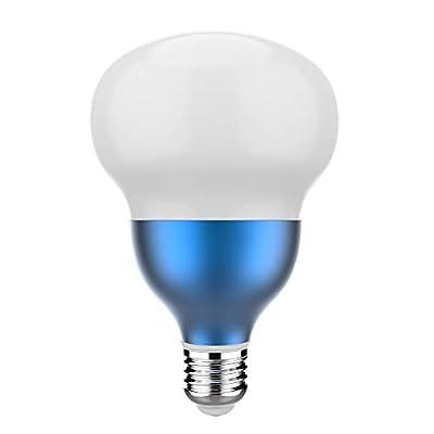 NUEVASA LED Bulbs 6500K Daylight Light Bulbs for Garden Garage Warehouse Store