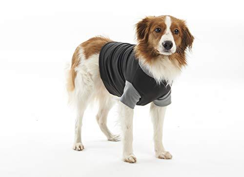 Buster Classic Body - Traje para Perros, Talla XS, Color Negro y Gris