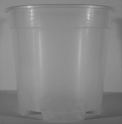 VASO TRASPARENTE IN PLASTICA IDEALE PER LE ORCHIDEE IN CONFEZIONE DA 6 PEZZI (17 Centimetri, 16 Centimetri)