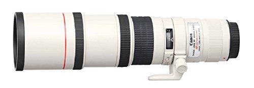 Canon Superteleobjektiv EF 400mm F5.6L USM für EOS (Festbrennweite, 77mm Filtergewinde, Optischer Bildstabilisator, Autofokus) schwarz
