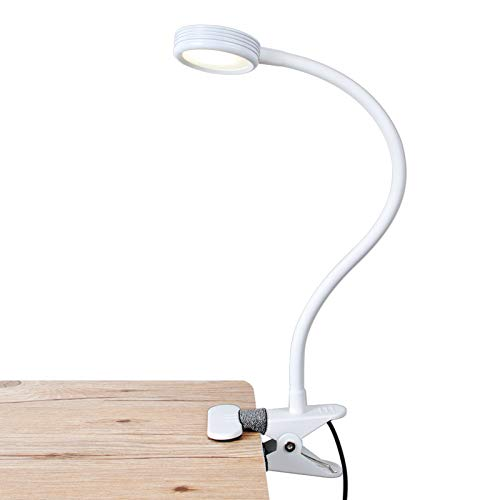 LEPOWER Metal Clip on Light/ Reading Light/ Light Color Changeable/ Night Light Clip on for Desk, Bed Headboard and Computers (White)