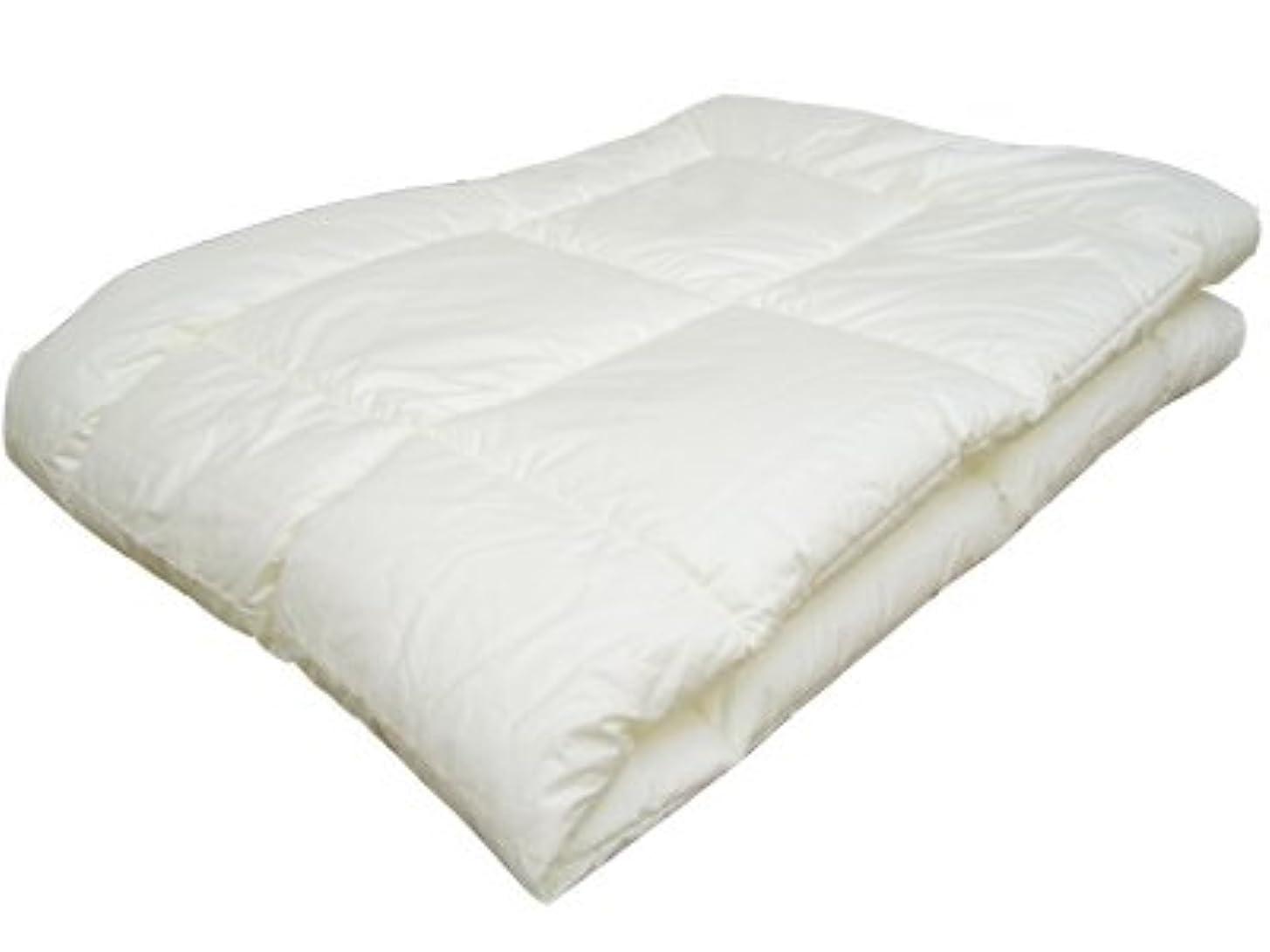 ペリスコープ玉年齢ウォシュロン(R) 洗える肌掛け布団 ダブルサイズ 190×210cm