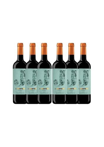 6 botellas J CANTERA TINTO 2020, vino tinto, 75 CL, D.O.C.a Rioja