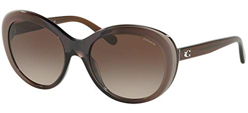 Gafas de Sol Coach HC 8259 Brown/Brown Shaded 54/19/140 mujer