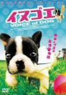 イヌゴエ [DVD]