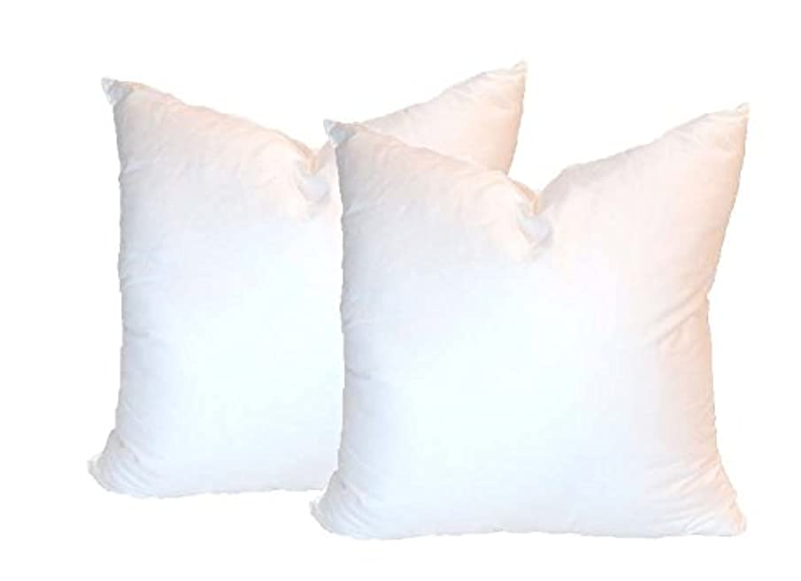Pillowflex Set of 2 Synthetic Down Alternative Pillow Inserts for Shams (15 Inch by 15 Inch)