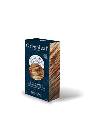 Greenleaf Coloration 100% Biologique 100 g - Dark Blonde