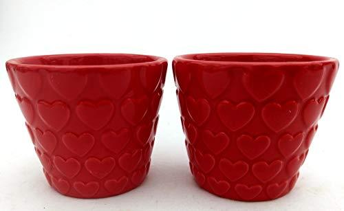 Powers To Flowers Vasen mit Herzen, 2...
