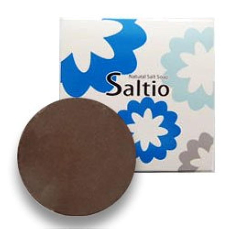 ブーム交差点銀無添加 石鹸 Saltio ソルティオ 泡立てネット 付き ( 洗顔?浴用 石けん ) 80g  / デオドラント