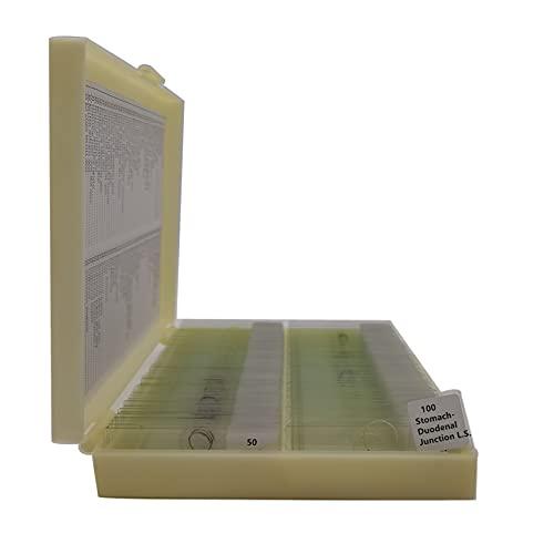 100pcs/set Teaching Microscope Human Histology Glass Prepared Slides