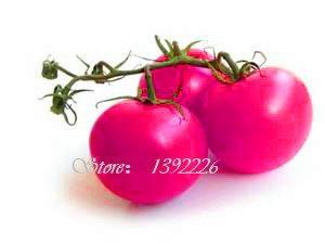 Un pack de 100 Pcs arc tomates couleur semences Balcon Fruits semences Légumes Graines en pot Bonsai pot Plant de tomate