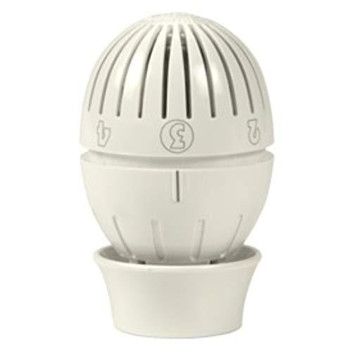 Giacomini R470–Kopf A wärmeleintende termostatico R470
