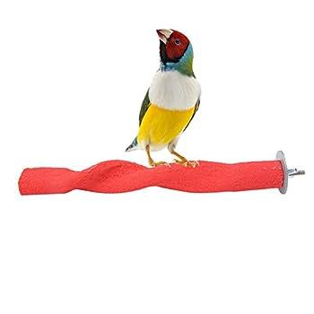 Perroquet Perchoir Sable, Rouge Support Perche Mâcher À Gratter pour Cockatiel Conure Africain Gris Budgies Ara Oiseaux, 22,5x3,5x3,5cm
