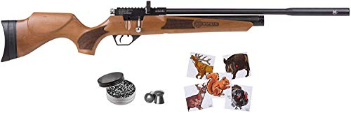 Hatsan Hydra New .25 Cal Air Rifle with Included Wearable4U 100x Paper Targets and 150x .25cal Pellets Bundle