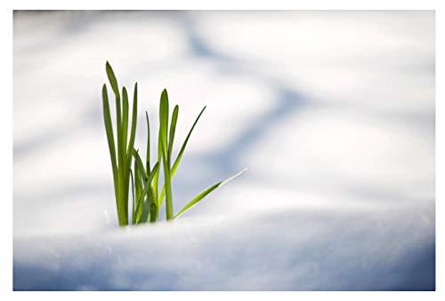 Diy Holzpuzzle 1000 Stück Grüne Pflanze, Die Durch Schnee Nach Oben Drückt Erwachsene Kinder Dekompression Unterhaltungsgeschenke