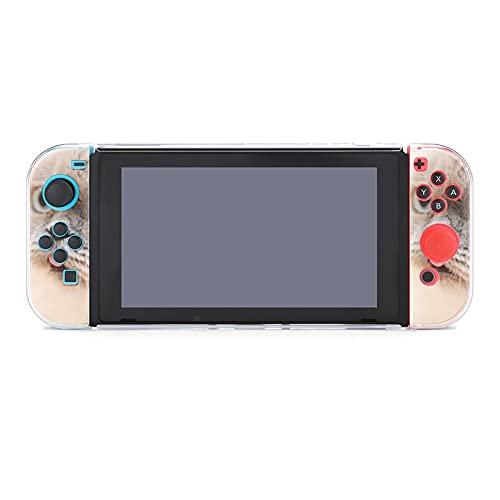 Hülle für Nintendo Switch Schottische Langhaar-Katze Fünfteiliges Set Schutzhülle Case Kompatibel mit Nintendo Switch Spielekonsole