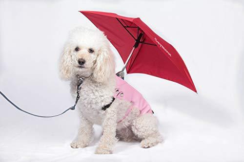 Seymour Dog Umbrella - Compact & Portable Umbrella, Waterproof & Windproof Travel Umbrella for Medium & Small Dogs, Sun Umbrella UV Protection, 2 in 1 Cute Umbrella & Dog Raincoat (Medium, Pink-RED)