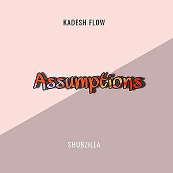 Assumptions (feat. Shubzilla)