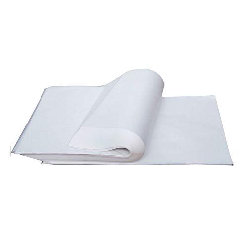 Nuluxi Lucida Trasparente Carta A4 Fogli da Lucido Carta Trasparente Trasparenti Fogli di Carta Trasferibile può Essere Utilizzata per Disegnare Fare Bricolage Dipingere Attività Artistiche(100 Fogli)