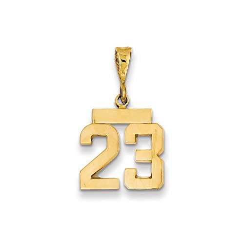 Solid 14k Yellow Gold Small Number 23 Charm Pendant