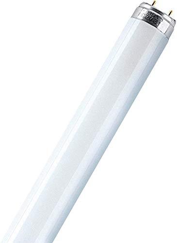 Osram L 38 W/840 Tube Fluorescent 25 x 1 LF