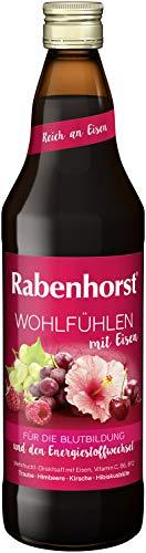 Rabenhorst Wohlfühlen mit Eisen, Früchtemischungen, 700 ml (6er Pack)