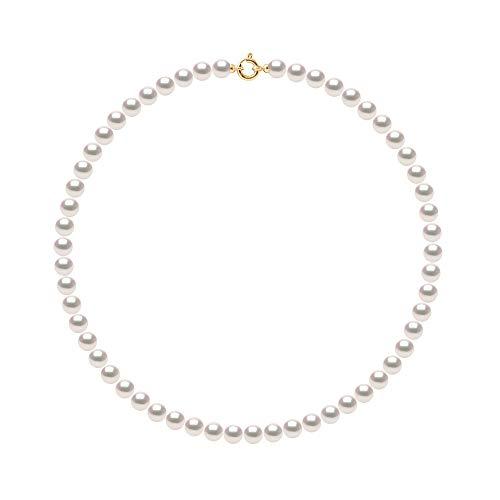 Pearls & Colors - Collier Rang de Véritables Perles de Culture AKOYA Rondes - Origine Japon Certifiée - Qualité AA+ - Or Jaune 750 Millièmes (18 Carats) - Fermoir Anneau Marin Luxe - Bijou Femme