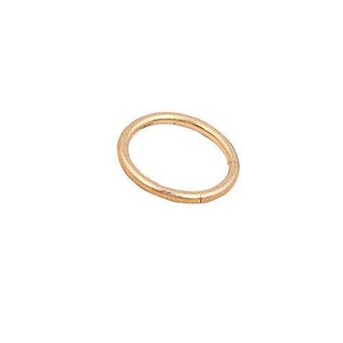 teng hong hui Women Segment Ring Hoop Ear Lip segment nose Nose Norstril Septum Piercing Girls 10mm Piercing Stud Earrings