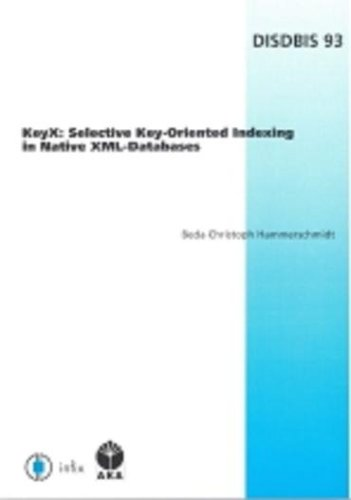 KeyX: Selective Key-oriented Indexing in Native XML-databases (Dissertations in Database And Information Systems - Infix)