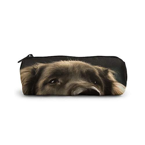 Estuche para lápices con cierre para perros, Leonberger, para guardar bolígrafos, lápices, papelería, pequeños viajes, cosméticos, neceser de maquillaje