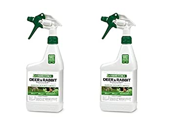 Liquid Fence 112 1 Quart Ready-to-Use Deer & Rabbit Repellent  Pack of 2