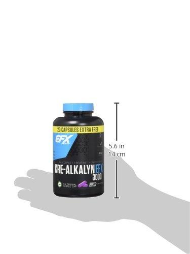 EFX Kre-Alkalyn 3000 – 260 Kapseln, 1er Pack (1 x 249 g) - 4