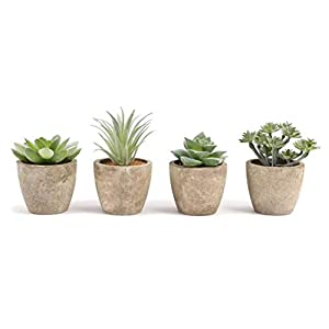 COCOBOO Artificial Succulent Set of 4 Mini Potted Fake Succulent Plants for Desk, Shelf and Office Decoration