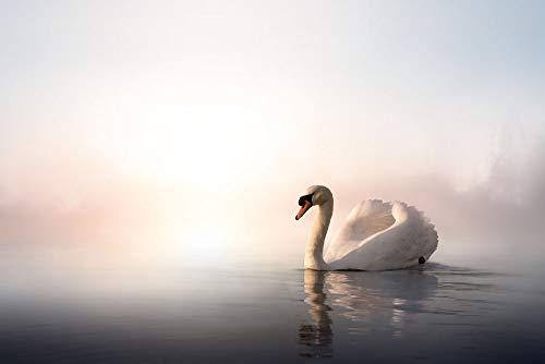 LTpintu Rompecabezas 1500 Piezas para Niños Adultos Cisne Blanco En El Lago El Regalo De Juego Intelectual Más Popular para Las Ideas De Navidad Y Halloween 87x57cm