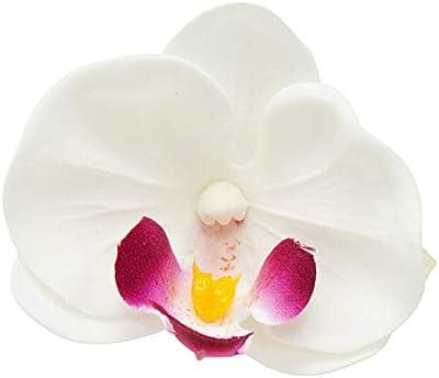 サボン ドゥ フルール ミニ胡蝶蘭 10輪BOX ホワイト プリザーブドフラワー 花材